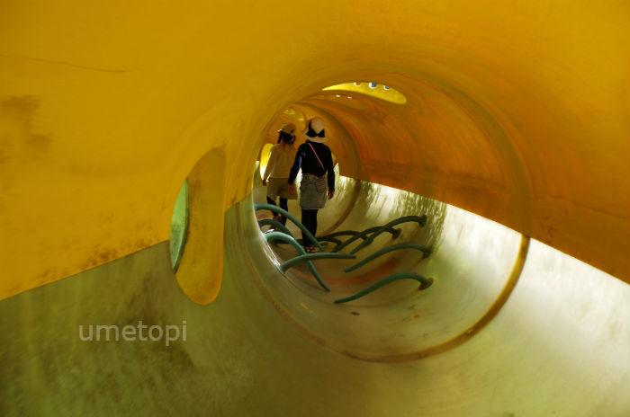 子どもとトンネルをくぐったり