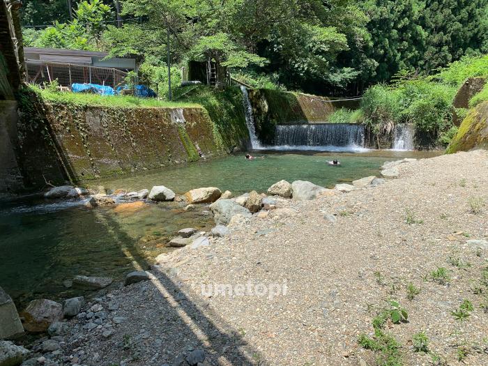 川遊び デイキャンプ