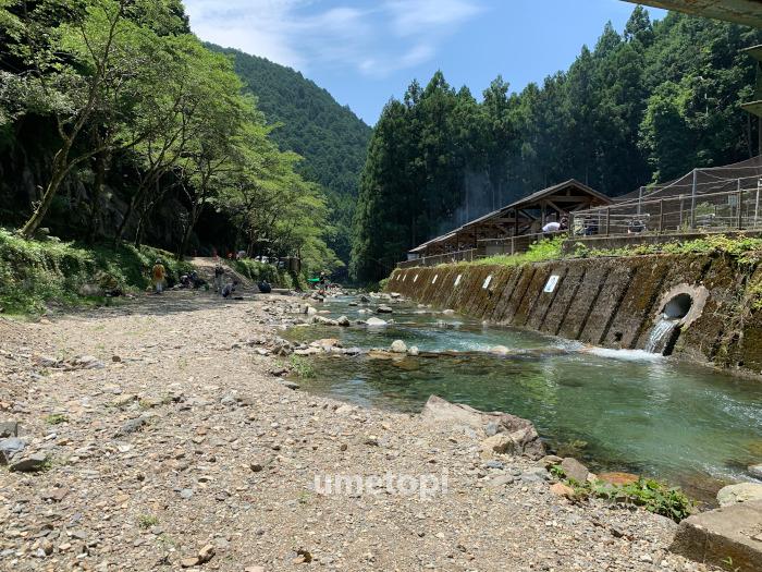 中井渓谷 自然